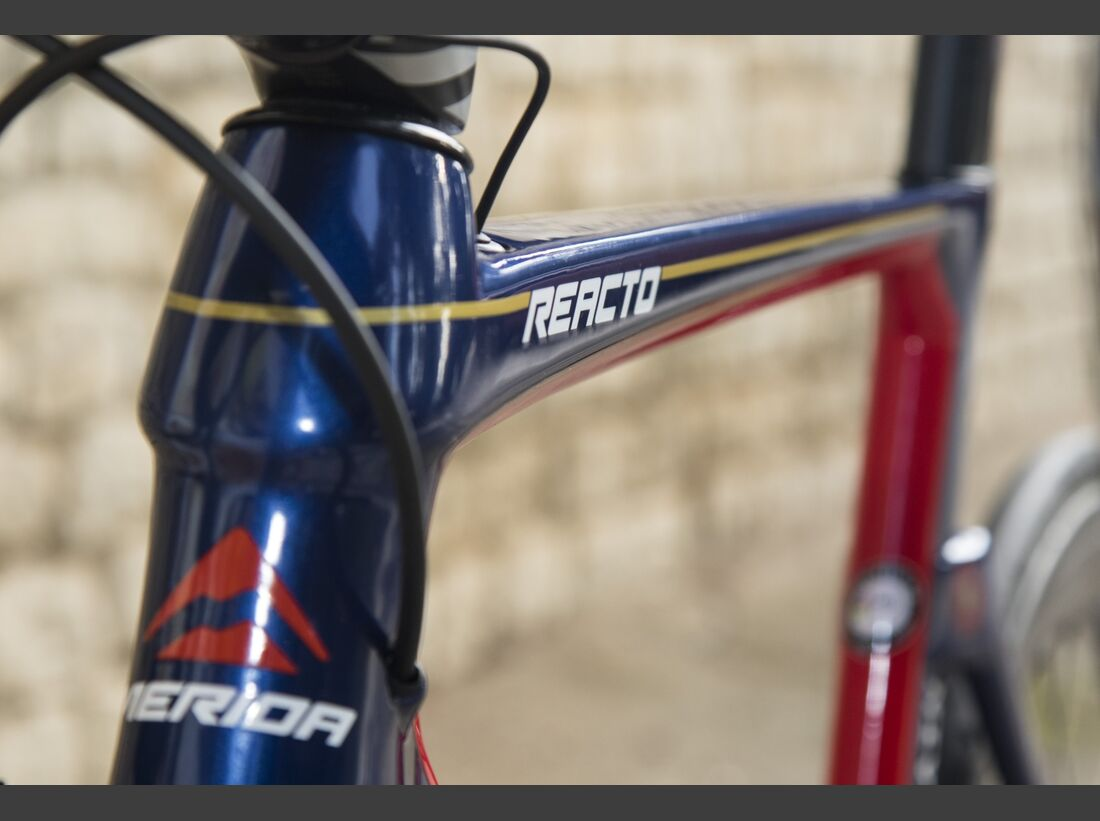 RB Bahrain Merida Team-Bikes 2017 REACTO_BMPCT3 (JPG)